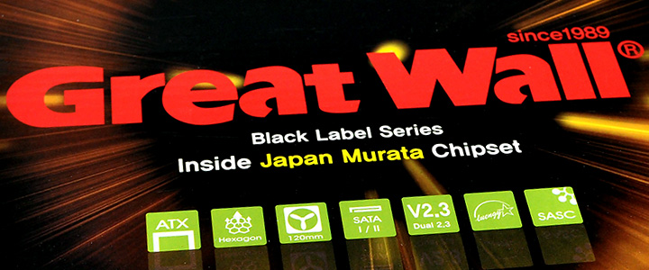 greatwall450 1 Great Wall 450WL Power Supply Black Label Series Review