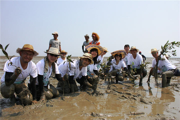 planting โซนี่ไทยขานรับนโยบายรักษ์สิ่งแวดล้อม Road to Zero ชวนพนักงานร่วมใจฟื้นฟูอนุรักษ์ป่าชายเลน