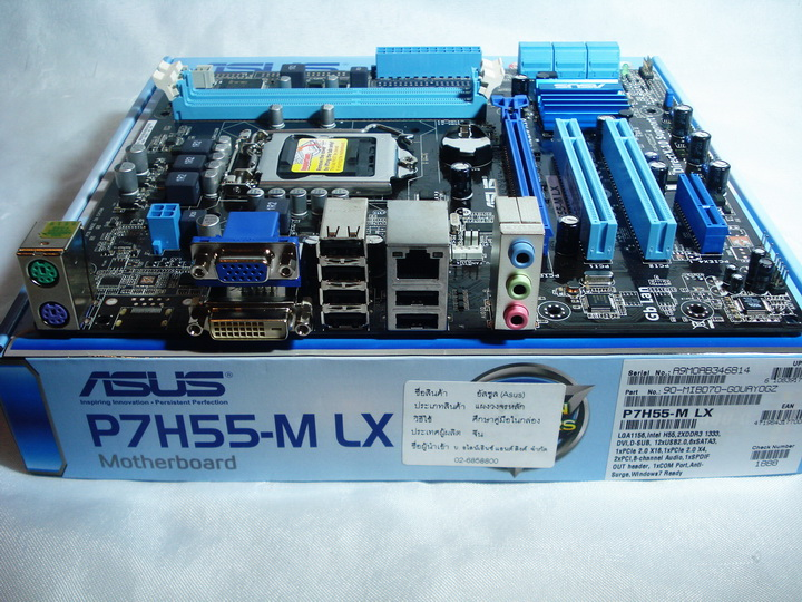 back panel ASUS P7H55 M LX